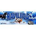 Osuus Raviliiga Sportista (1kpl) ja Suomen Hippoksen kausikortti 2018 (1 kpl)
